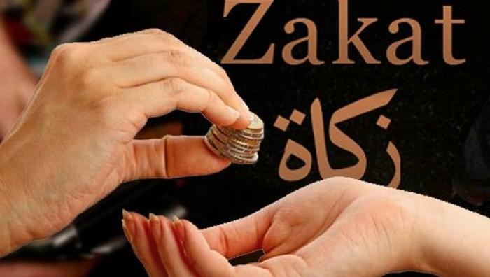 Zakat mosquée dijon